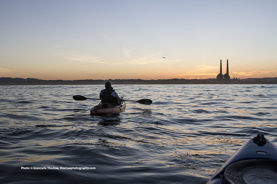 Moss Landing Kayak Whale Watching